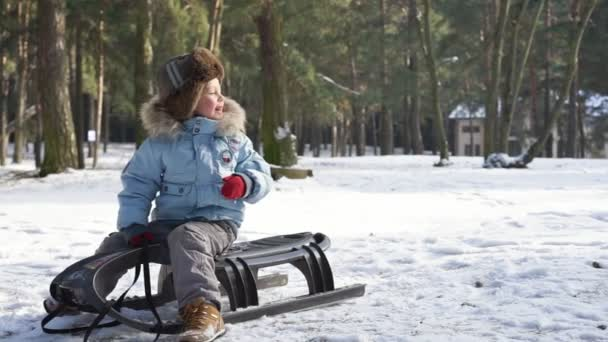children sledding on snow active fun for family christmas vacation stock video - Christmas Vacation Sled