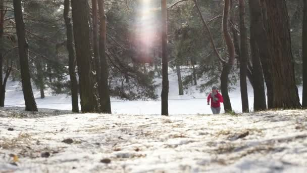 Läuferin joggt im kalten Winterwald in warmer, sportlicher Laufkleidung und Handschuhen.