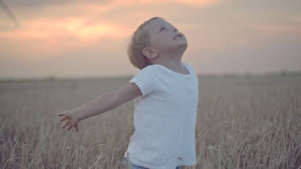 Glücklicher Junge im Weizenfeld mit Windrädern