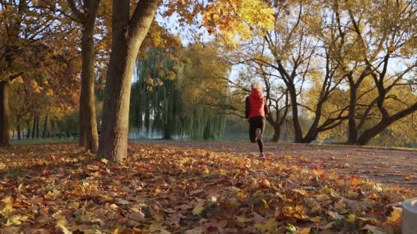 Woman runner running in fall autumn forest. Female fitness girl jogging on path in amazing fall foliage landscape nature outside. Slow motion.