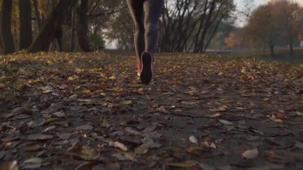 Piedi di donna del corridore in esecuzione in primo piano strada di autunno sulla scarpa. Allenamento di jog caduta di fitness femminile modello allaperto su una strada ricoperta di foglie cadute. Concetto di stile di vita sano sport. Slow motion