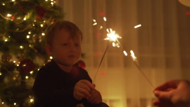 The boy holds a Sparkler and laughs. Sparklers. the sparklers in his hands. New year mood. Christmas tree. Lights. Handsome boy. Children.