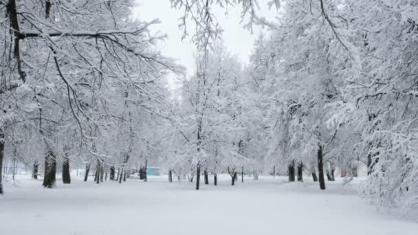 schöner schneebedeckter Stadtpark im Winter