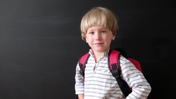 Back to school. Cute little boy at blackboard. Child from elementary school with bag looking at camera and smiling. Education concept.