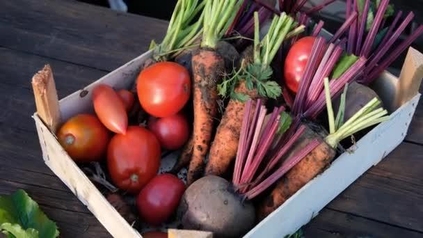 dřevěná krabice s čerstvou ekologickou zeleninou, sklizeň. Zavřít