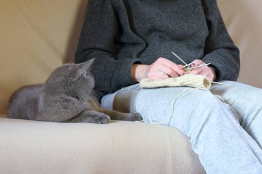 A woman knitting sock next to a lying cat on the couch.