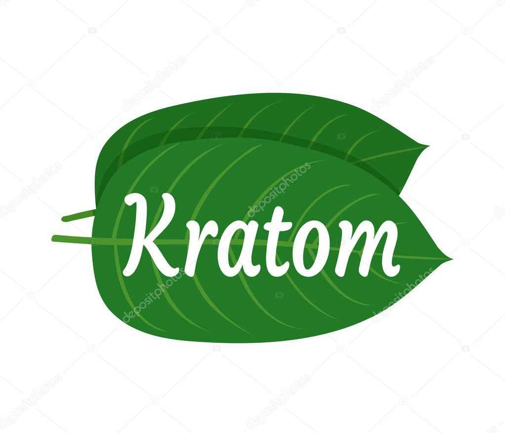 Mitragyna speciosa, kratom leaf logo