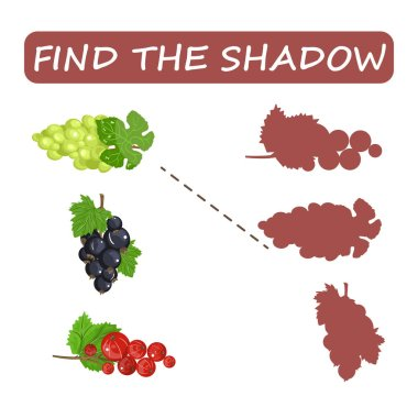 Find the right shade of fruit. Kiwi with grapes and persimmon .