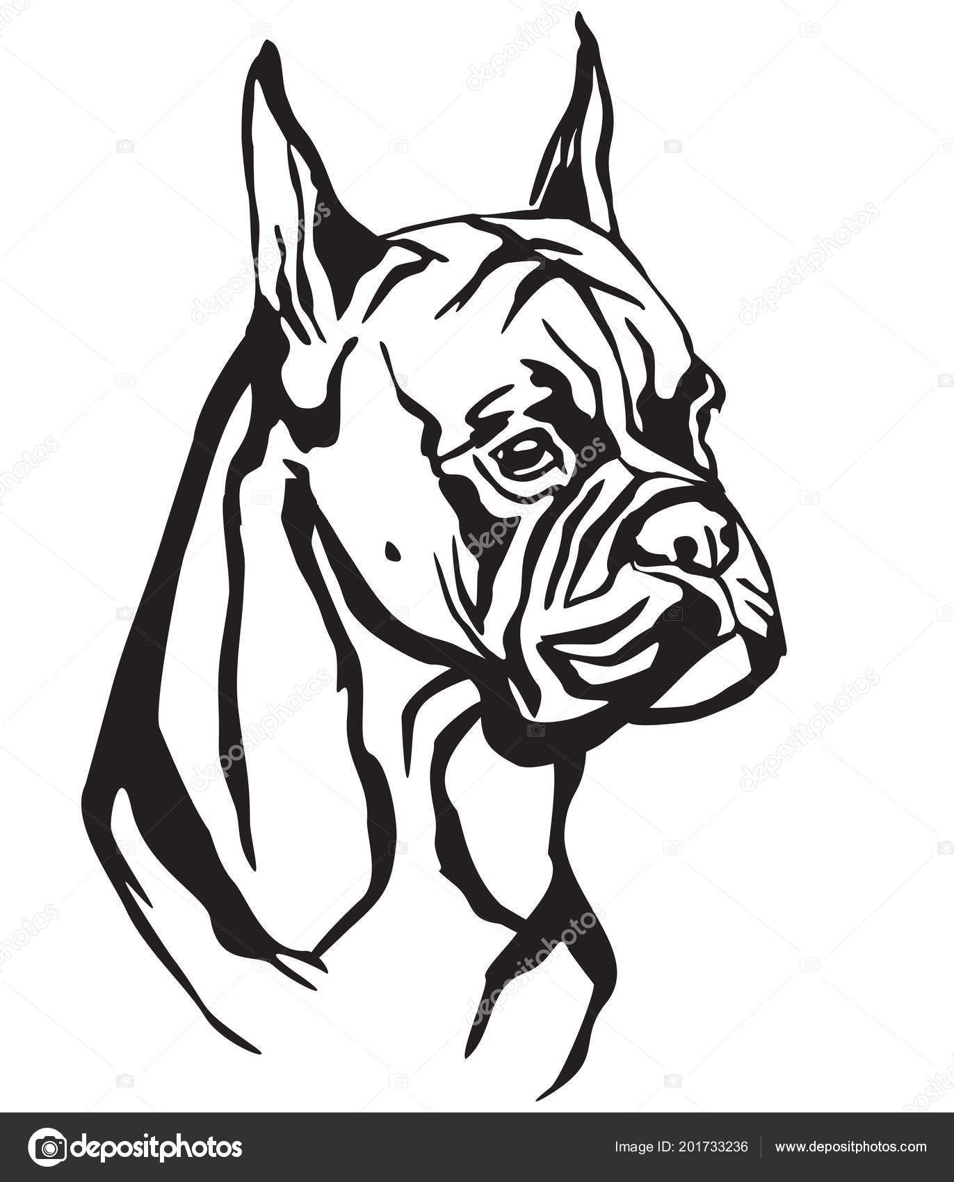 Tatuaje Silueta Boxer Decorative Portrait Dog Boxer Vector