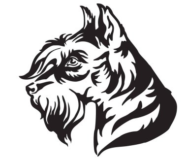 Decorative portrait in profile of Dog Miniature Schnauzer, vector isolated illustration in black color on white background. Image for design and tattoo.