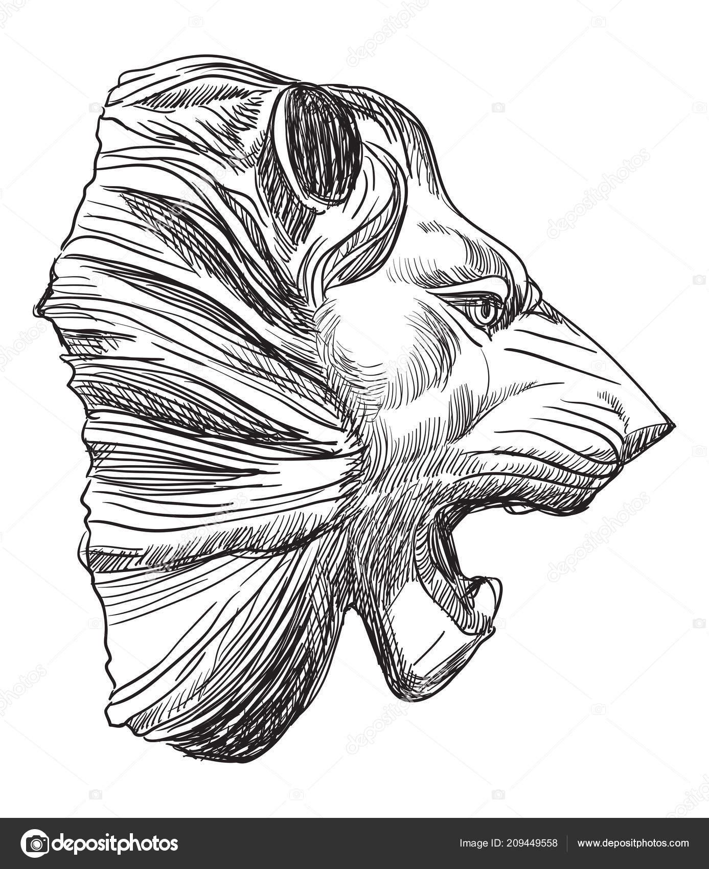 Antique Soulagement Sculpture Forme Voir Profil Tête Lion
