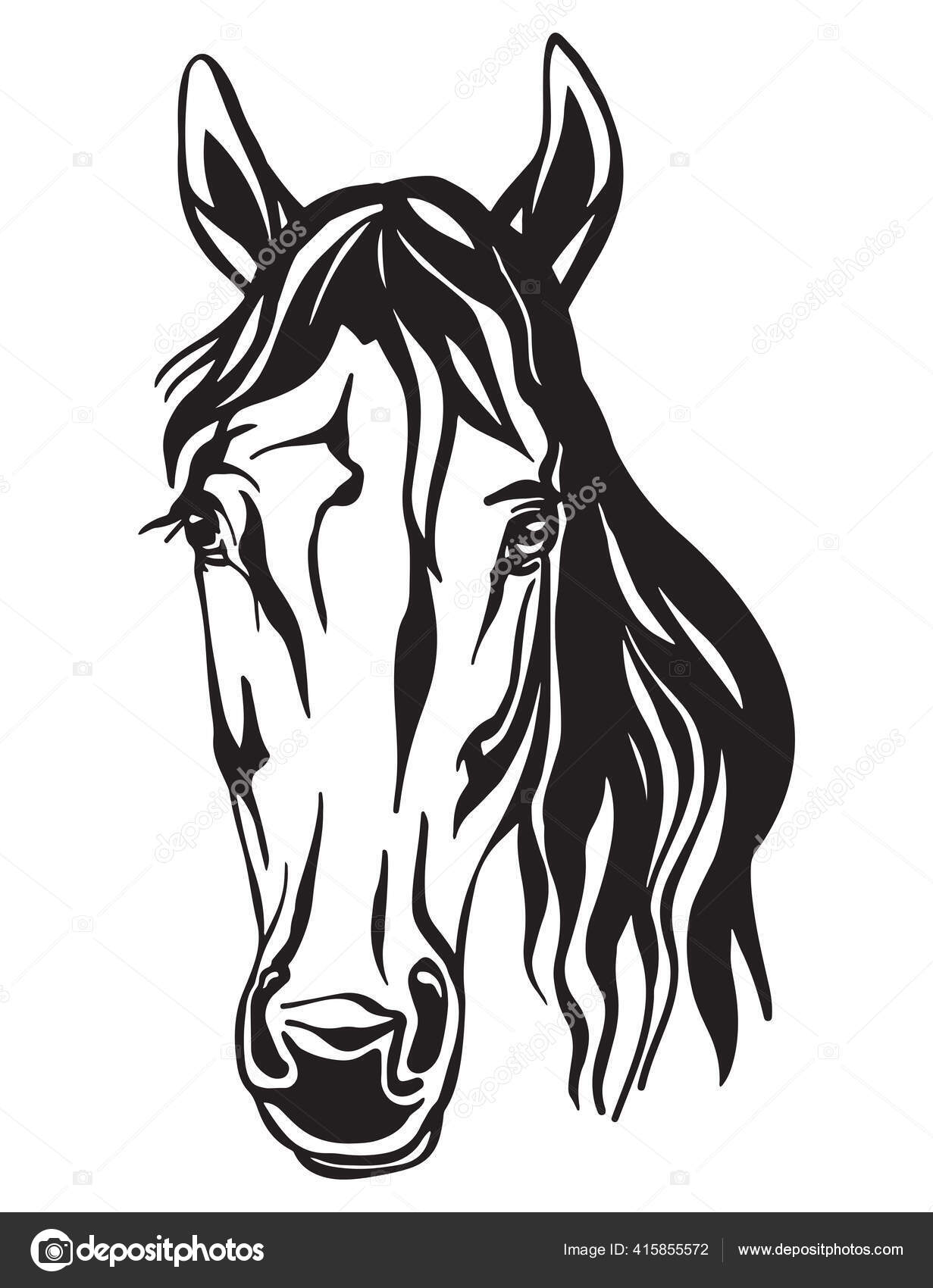 Beauty Portrait Horse Vector Illustration Black Color Isolated White Background Stock Vector C Alinart 415855572