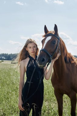 Girl rider stands next to the horse in the field. Fashion portrait of a woman and the mares are horses in the village in the grass. Blonde woman holding a horse by the bridle, beautiful body