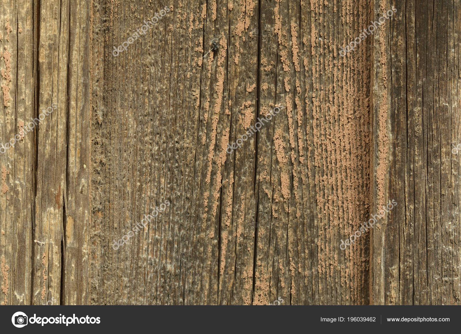 Une Vieille Planche Bois Brut Sans Peinture Une Texture Fond U2014 Photo