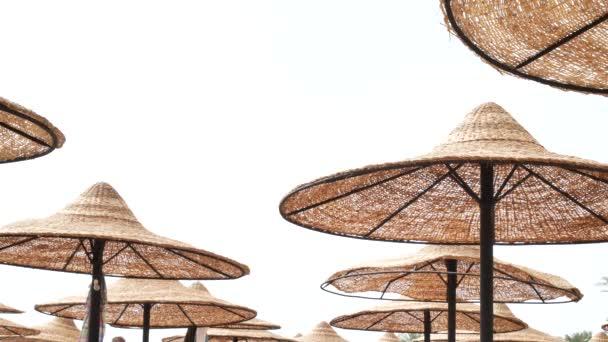 Palmen und Sonnenschirme am Strand