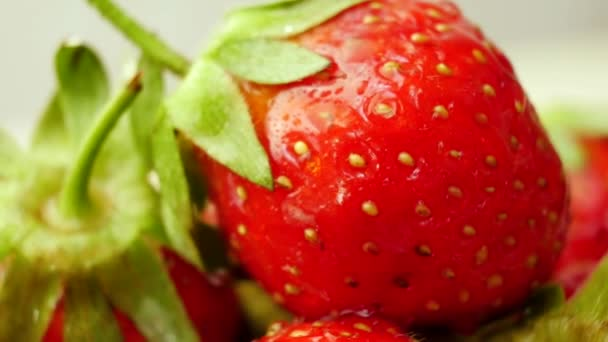čerstvé jahody v misce