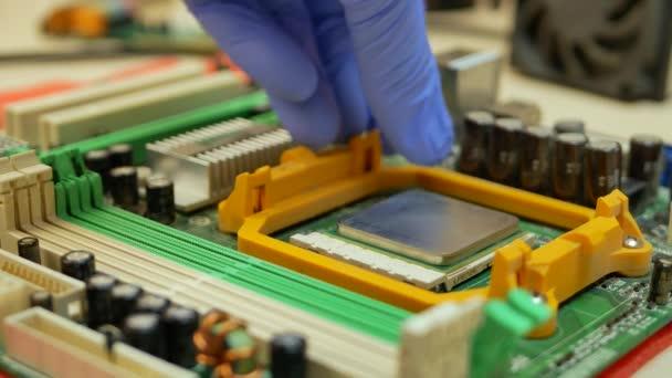 Hand des Computertechnikers bringt Computer-CPU-Prozessor