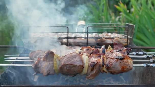 Čerstvé hovězí steak nebo váleček z vepřové panenky na grilu na venkovní přírody