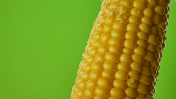 Kapky vody stékají nebo pádu na zrna čerstvé kukuřice