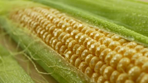 Kapky vody na čerstvou kukuřici jádra se zelenými listy