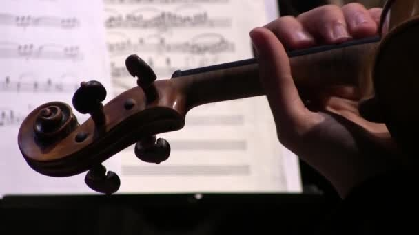 Violinist hands playing violin orchestra musical instrument