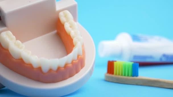 How to brushing teeth by rainbow bamboo toothbrush