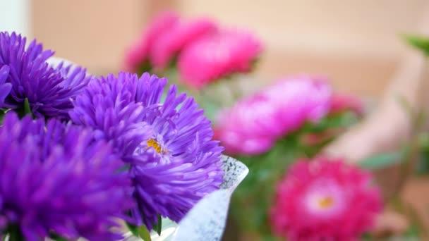 Nő virágkereskedések kezét így csokor Mihálynapi daisy vagy aster