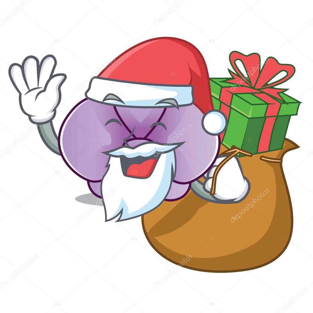 Santa with gift orchid flower mascot cartoon