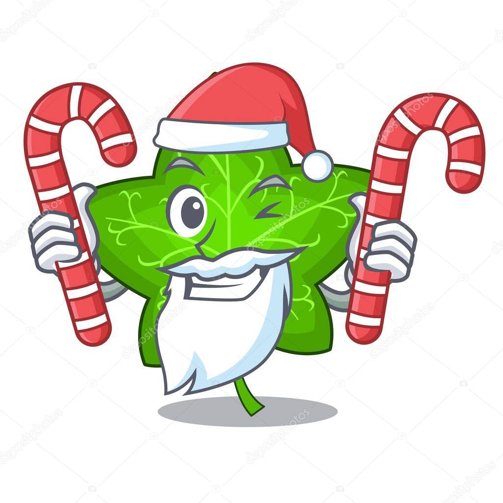 Santa with candy mascot cartoon beautiful ivy leaf plant vector illustration