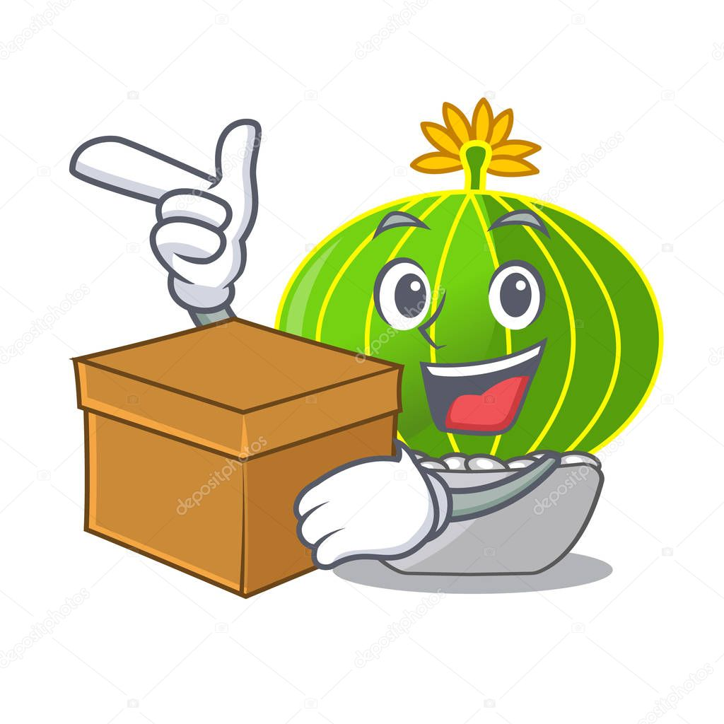 With box plant notocactus magnifica on character pot vector illustration