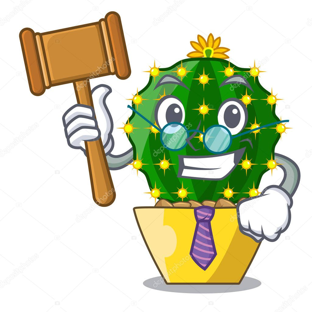 Judge cartoon mammillaria humboldtii cactus at park cactus vector ilustration