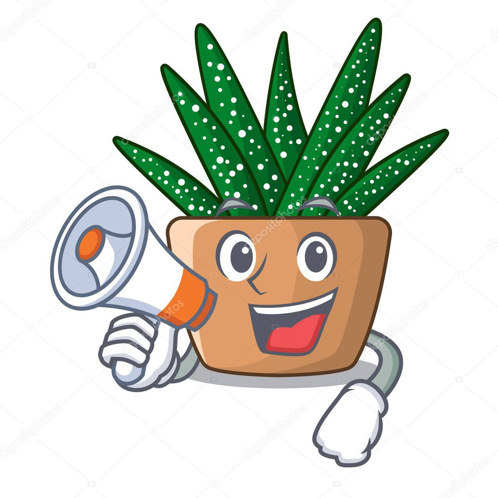 With megaphone mini zebra cactus on cartoon pot vector illustration