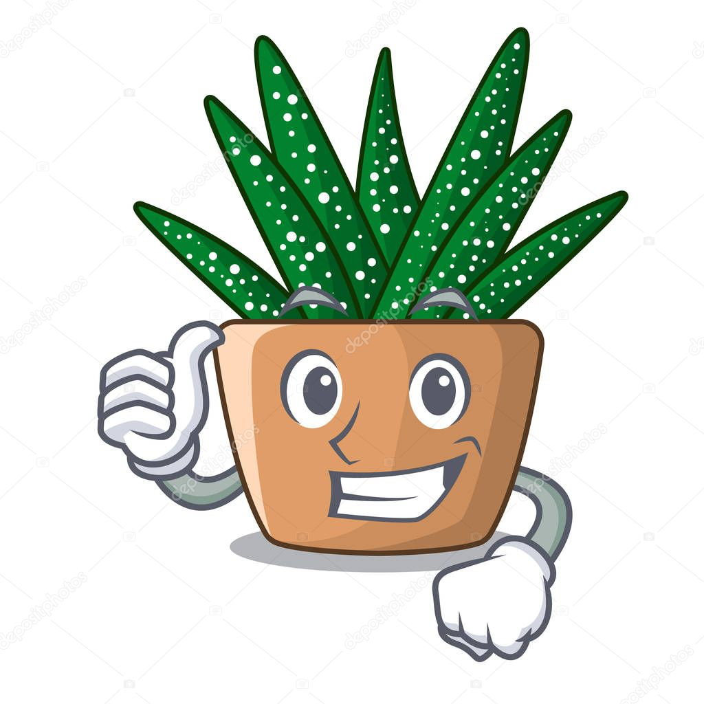Thumbs up character small zebra cactus plant on pot