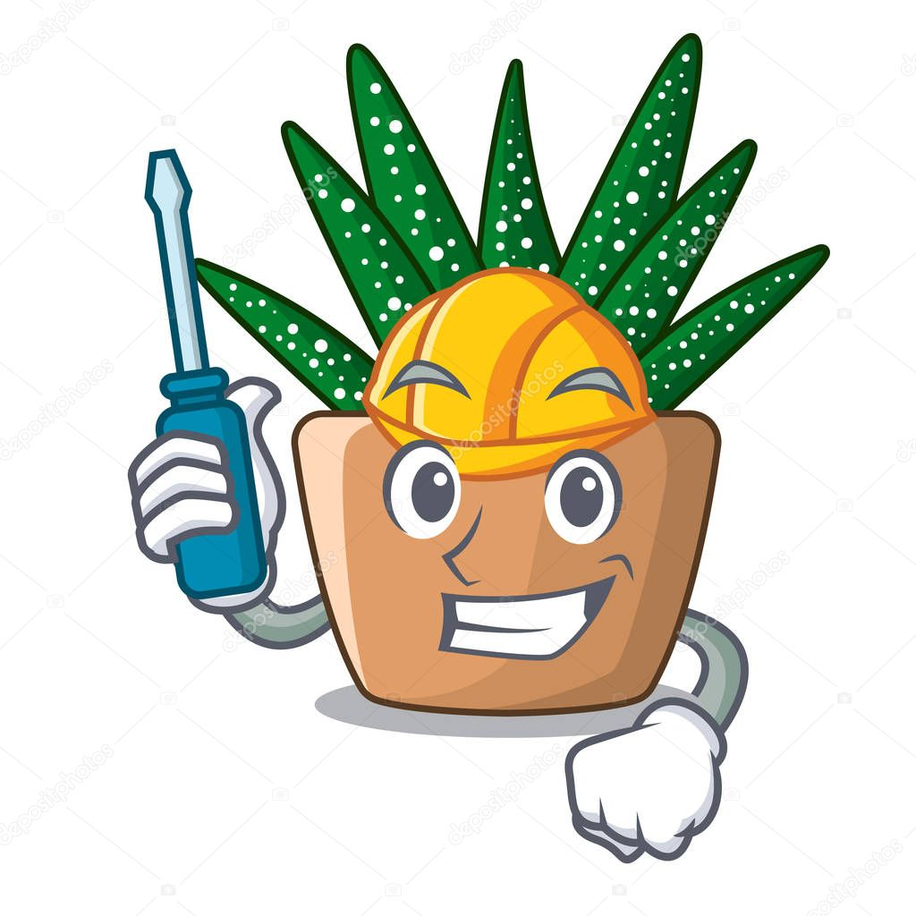 Automative cartoon zebra cactus plant at park vector illustration