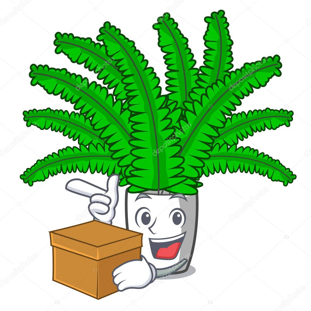 With box beautiful cartoon ferns in green foliage vector ilustration