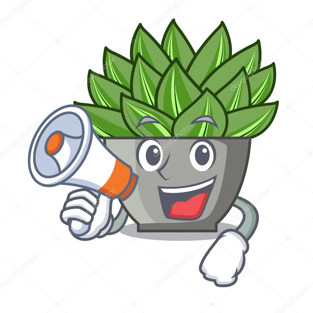 With megaphone character cartoon pot plant echeveria cactus