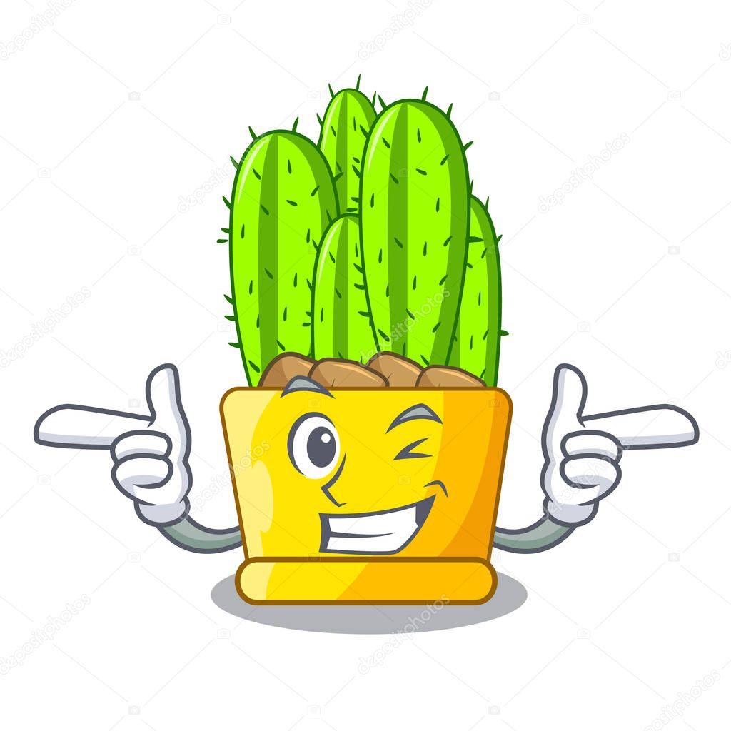 Wink cereus cactus bouquet on character cartoon