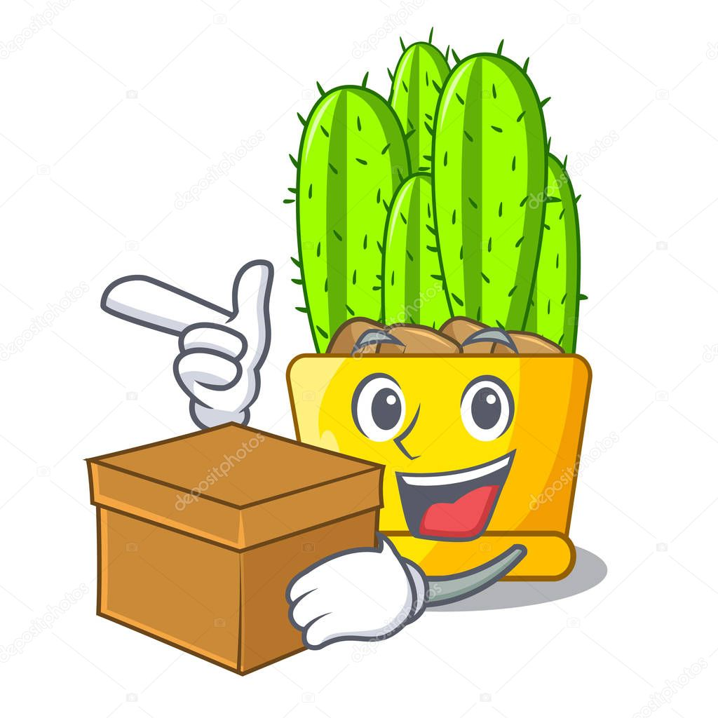 With box cereus cactus bouquet on character cartoon