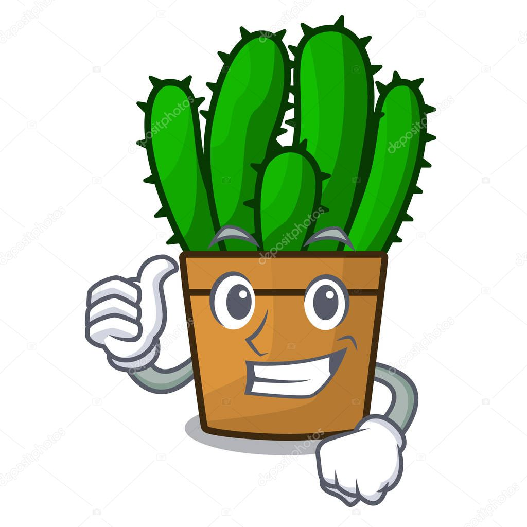 Thumbs up character spurge cactus home decor indoor