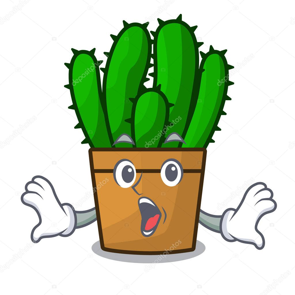 Surprised spurge cactus plant isolated on mascot