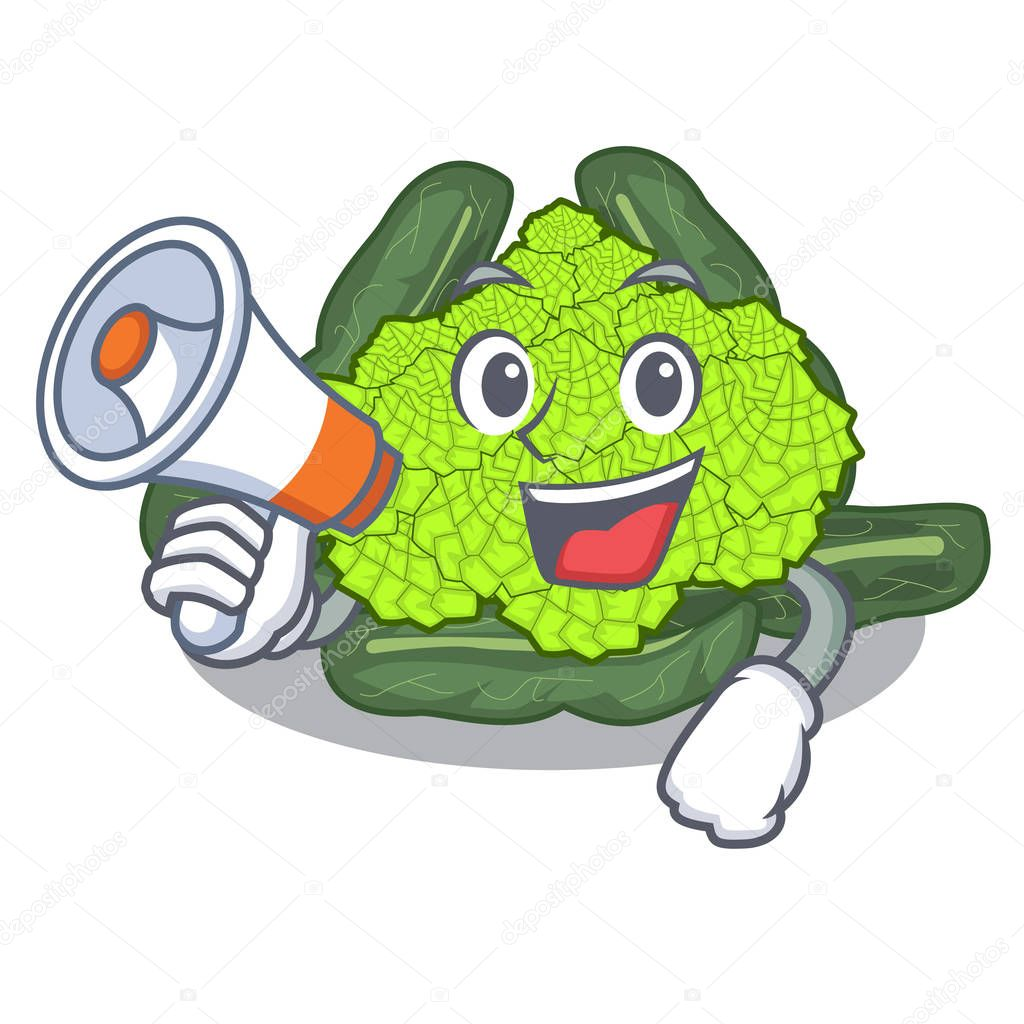 With megaphone roman cauliflower in the shape cartoon vector illustration