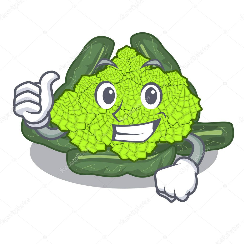 Thumbs up detail texture of roman cauliflower character vector illustration