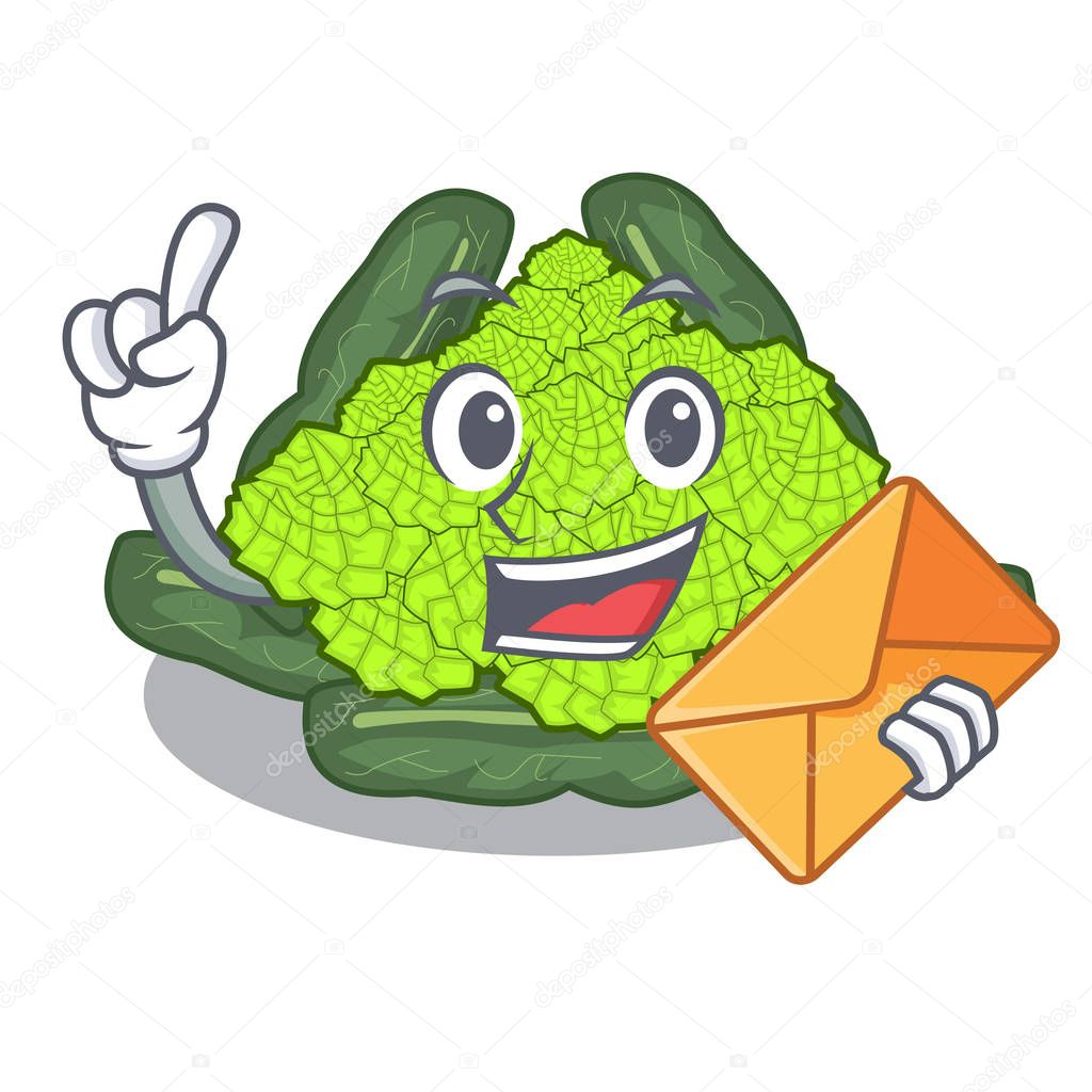 With envelope detail texture of roman cauliflower character vector illustration