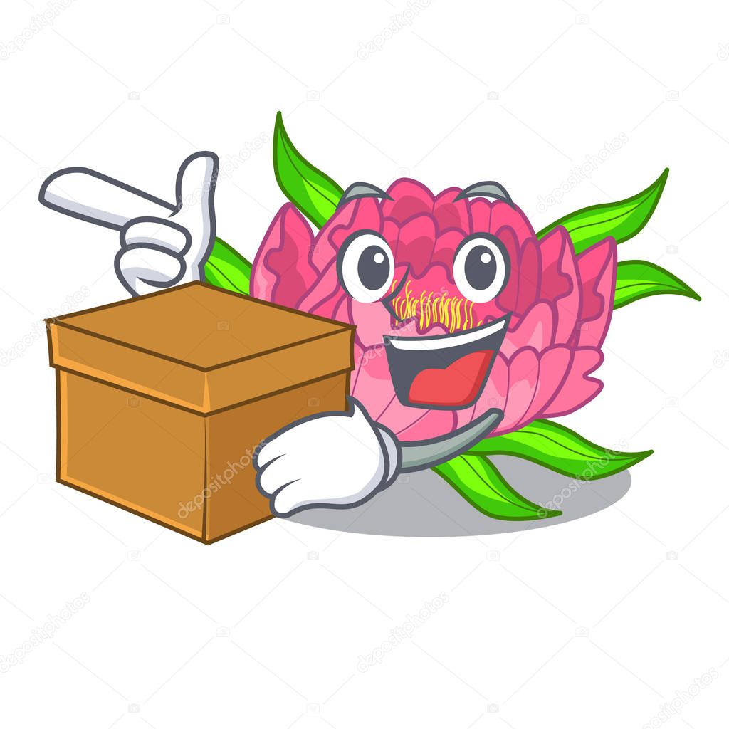 With box peony flowers in the cartoon pots vector illustration