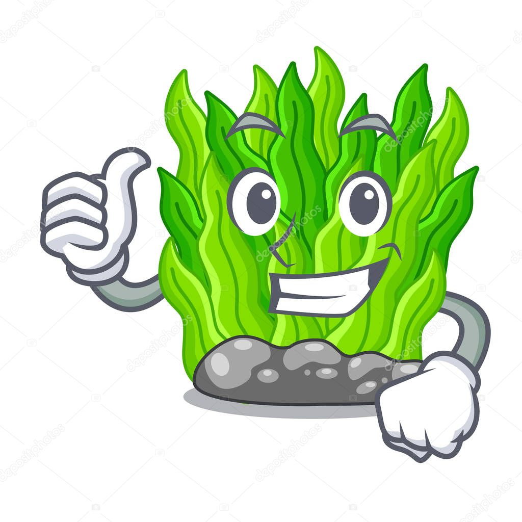 Thumbs up green seaweed isolated with the character