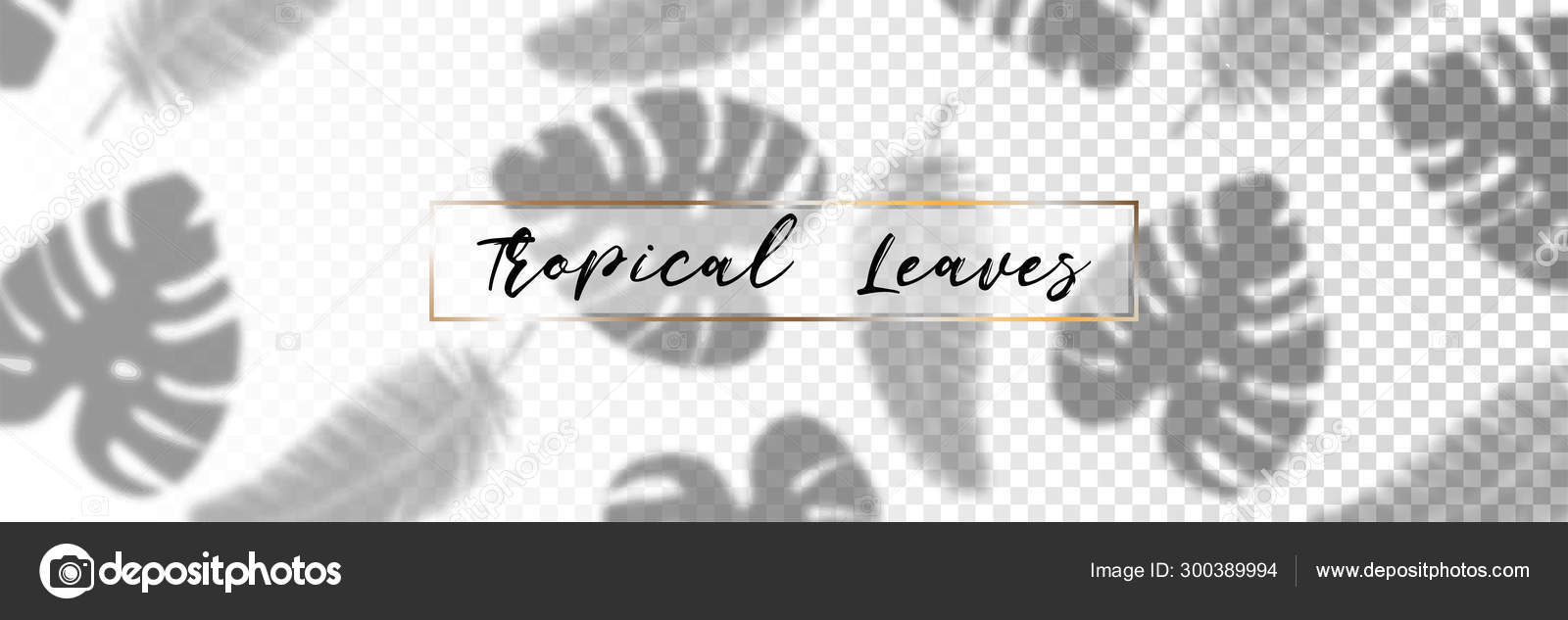 Shadow Overlay Effect Tropical Leaves Shadow Palm Leaves On Transparent Background Vector Stock Vector C Smile3377 300389994 Download 4,096 tropical leaves free vectors. https depositphotos com 300389994 stock illustration shadow overlay effect tropical leaves html
