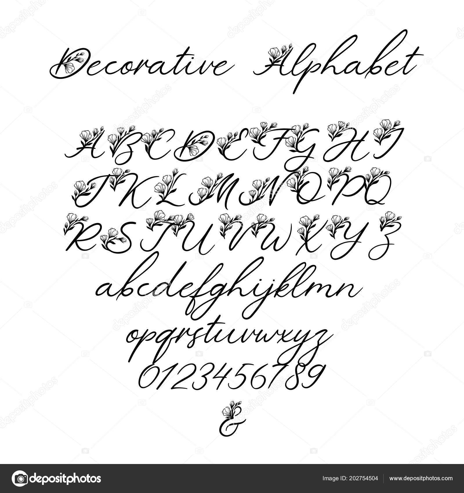 Vector calligraphy alphabet floral letters decorative handwritten alfabeto de caligrafia de vetor letras de floral exclusivas fonte decorativa escova manuscrita por convite de casamento monograma logotipo stopboris Gallery