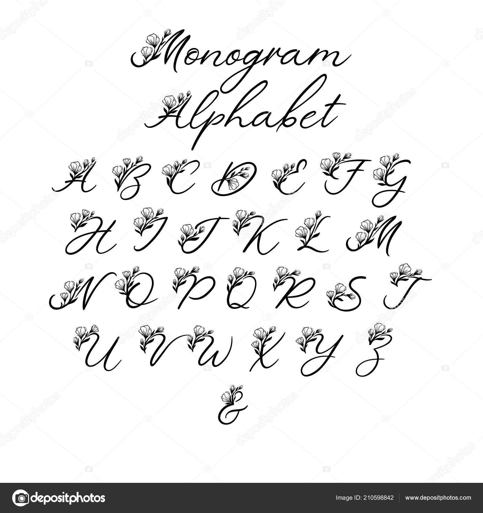 Vector Calligraphy Alphabet Floral Letters Decorative