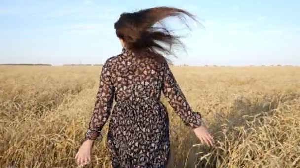 brunette woman in a dress runs along a field of ripe wheat