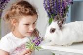 kleines Mädchen beim Spielen mit echtem Kaninchen. Kind und weißer Hase auf e